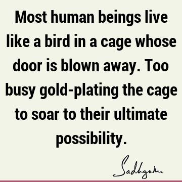 Being Human Quotes Being Human Sayings Quotations Picture Quotes