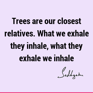 Trees are our closest relatives. What we exhale they inhale, what they exhale we